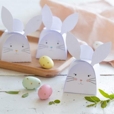 Gabarit de boîte à imprimer : les boîtes lapins, 3 couleurs au choix !